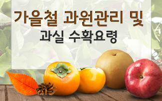 가을철 과원관리 및 과실 수확요령