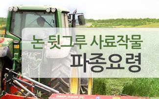 논 뒷그루 사료작물 재배요령