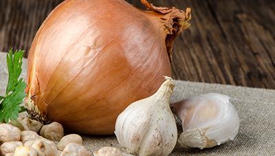 겨울나기 후 마늘과 양파 주요 관리기술