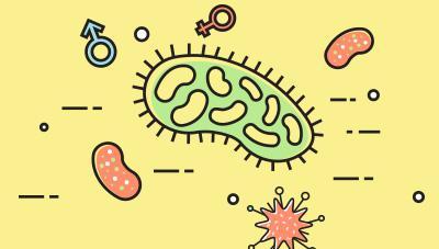 미생물을 이용한 병해충 방제와 실제