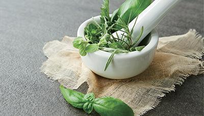 고품질 유지를 위한 약용작물 수확 후 관리