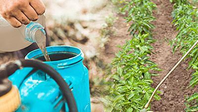 유기농 액비 제조 및 활용 기술