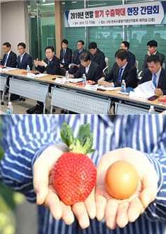 「2019 농식품수출기술지원 성과확산대회」개최